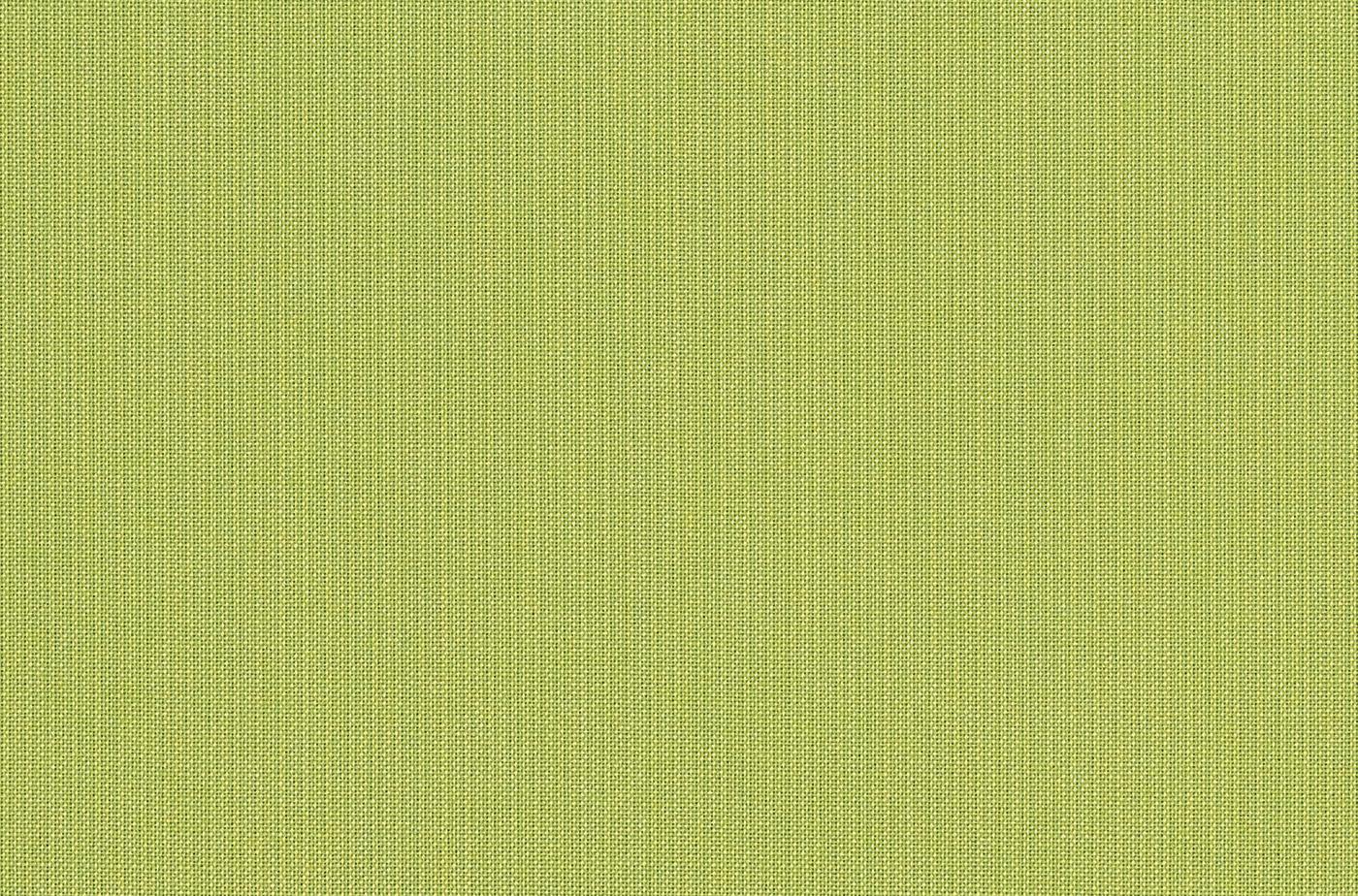 Spectrum Kiwi 48023 0000